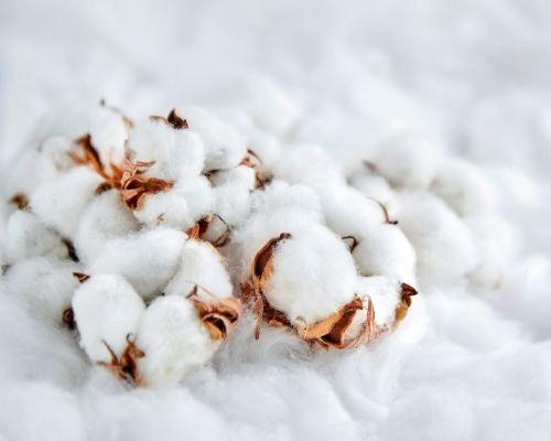 Traversin en coton